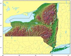 New York Relief Map