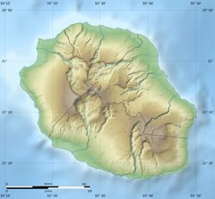 Reunion Department Relief Map