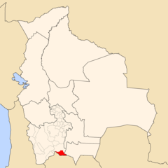 Bolivia Modesto Omiste