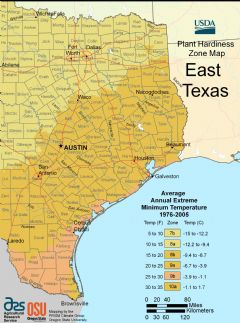 East Texas Plant Hardiness Zone Map