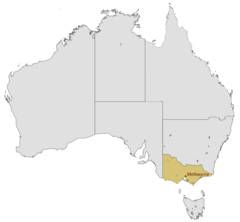 Location Map of Melbourne